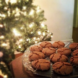 Best Gingersnaps In The World